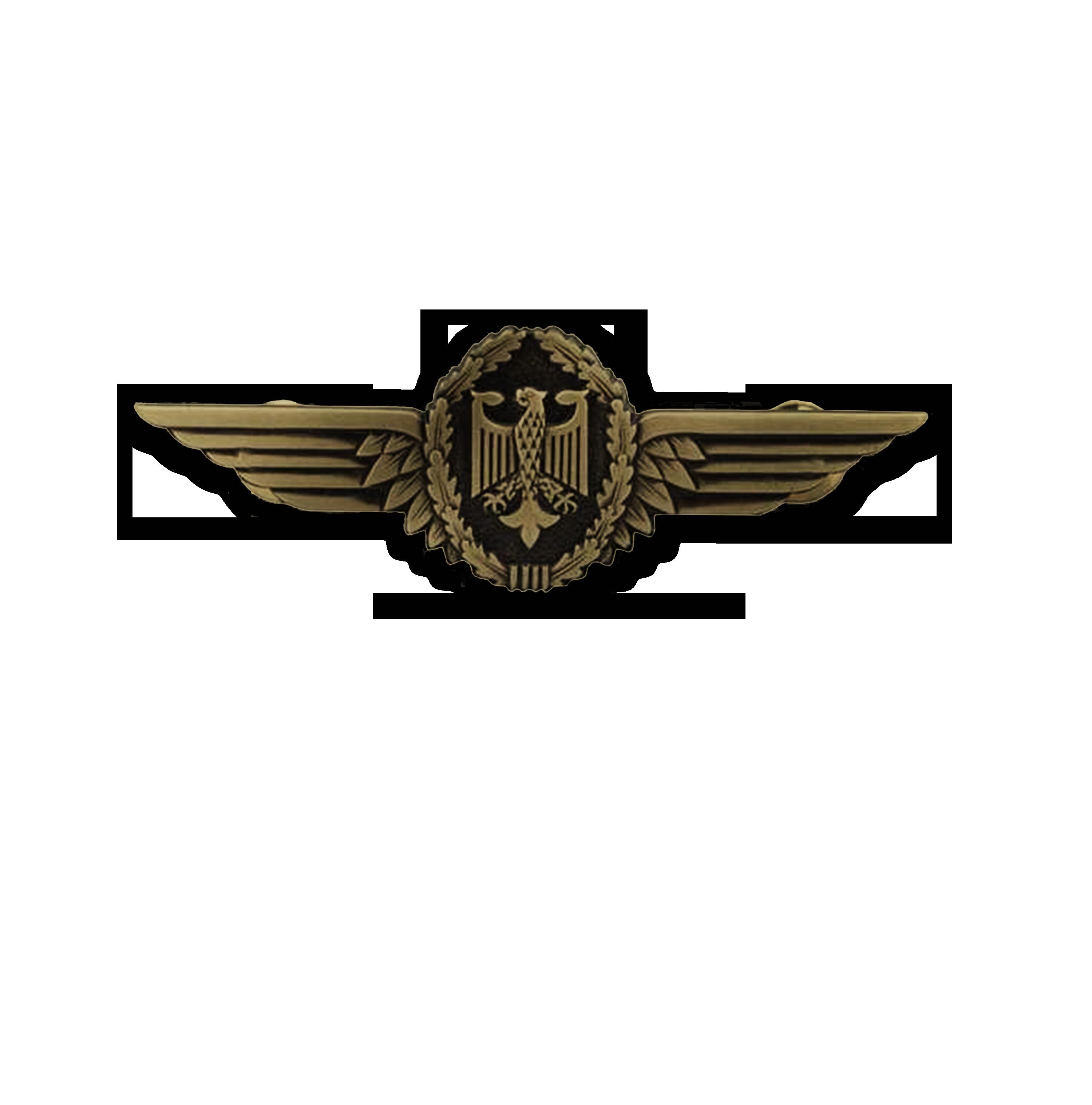 Pilotenschwinge Bronze